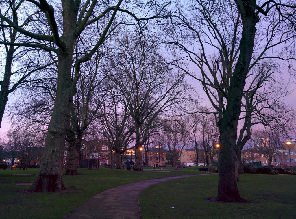 A picture of twilight through the trees in Shandy Park, East London